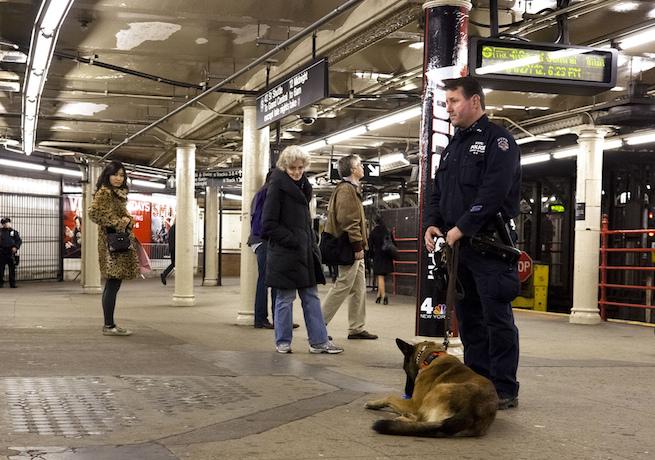 k-9-nypd